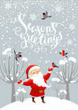 Santa and bullfinches