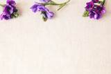 Purple blue flowers on linen toning copy space background