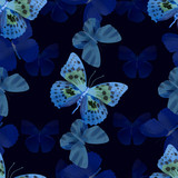 butterfly seamless dark