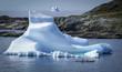 kayakers visit iceberg