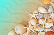 Quadro Many seashells and sea starfishes on sand background, sea and beach concept
