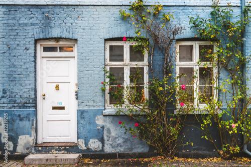 Poster Autumn Street in Copenhagen