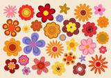 Fototapety Fleurs des années soixante-dix (part 3)