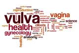 Vulva word cloud