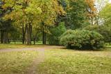 town park in early autumn season