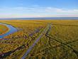 Delaware Bay Marsh