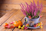 Autumn decoration with erica and pumpkin on old rustic wood