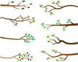 Vector Set of Tree Branches with Green Leaves - 122364470