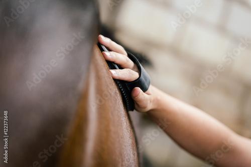Nahaufnahme, Frau striegelt ihr braunes Pferd