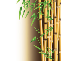 Bamboo trunk with leaves icon. Nature plant decoration and asia theme. Colorful design. Vector illustration