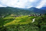 Top view of Punakha, Bhutan