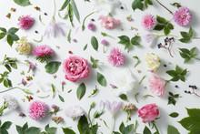 elegant Hintergrund der rosafarbenen Rosen