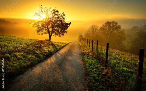 Tuinposter Oranje Idyllische Landschaft bei Sonnenaufgang, mit Weg und Baum auf der Wiese