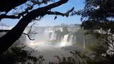 Iguazu Falls and Forest Argentina 4K