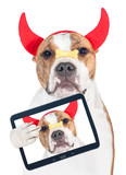 Funny halloween dog with horns and cookie taking a selfie