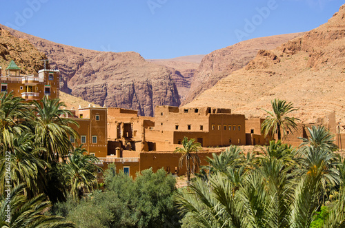 Foto op Canvas Marokko Green oasis in Morocco