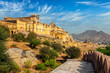 View of Amer (Amber) fort, Rajasthan, India
