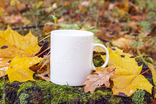 White coffee mug on a stump with fallen leaves in autumn forest.