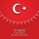 Cumhuriyet Bayramı 29 Ekim, Bayrak süsleme