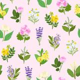 Fototapety Essential flowers seamless pattern