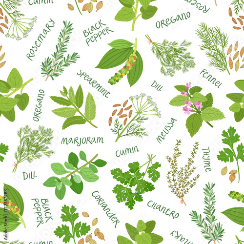 Fototapeta Herbs and spices seamless pattern on white background