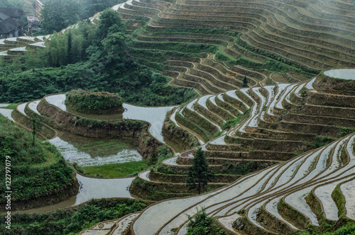 Staande foto Guilin Longsheng rice terraces, Dazhai, Guilin, China