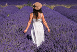Fototapety Woman in a lavender field in Valensole plateau, Provence (France)