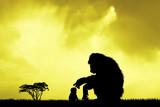 baby monkey at sunset