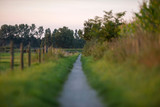 Rural path in countryside landscape. Geesteren. Achterhoek. Geld
