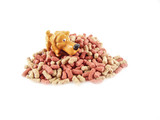 Dry dog food with small dog isolated