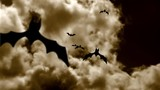 Flock of bats flying in mystical sky.