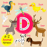 D letter tracing. Deer. Dodo. Dog. Donkey. Dove. Dragonfly. Duck. Cute children zoo alphabet flash card. Funny cartoon animal. Kids abc education. Learning English vocabulary. Vector illustration.