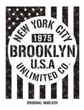 Vintage flag USA brooklyn typography, t-shirt graphics, vectors