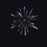 fireworks on dark background, vector