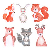 Woodland Animals  Watercolor Illustrations Cute Animals Forest Wall Sticker