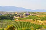 la rioja field landscape and marques del riscal winery
