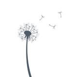 Dandelion silhouette illustration