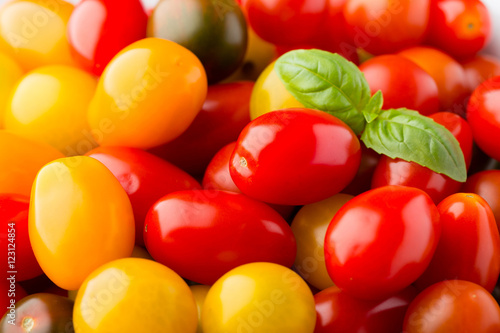 Poster Tomatoes on the gray background. Colorful tomatoes, red tomatoes