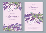 Lavender natural cosmetics banners - 123170419