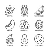 basic fruits thin line icons 2 with text