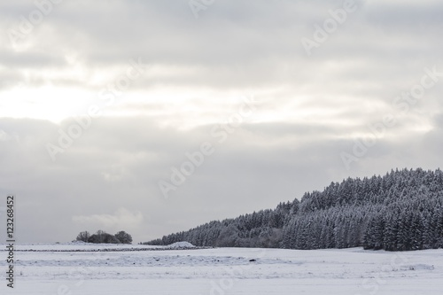 White winter wonderland with snow ice forest in cool nature. The sun kisses this wonderful winter scene in a beautiful snowy and icy landscape. Cloudy sunny sky and snow-covered meadows - 123268452