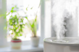 Humidifier spreading steam - 123338611