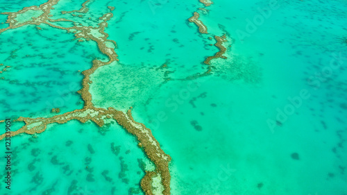 Foto op Canvas Groene koraal Luftaufnahme vom Great Barrier Reef in Queensland, Australien