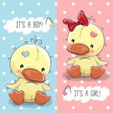 Ducks boy and girl