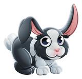 Cartoon Rabbit Animal Character