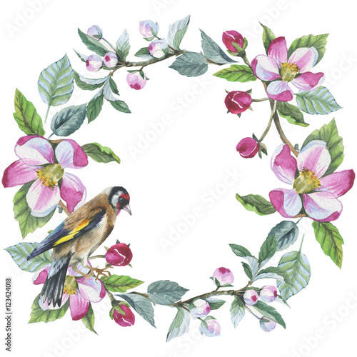 Wildflower apple flower wreath in a watercolor style isolated. Aquarelle wild flower for background, texture, wrapper pattern, frame or border. © yanushkov