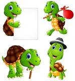 "Set of funny turtle on a white background 123430882,open umbrella"""