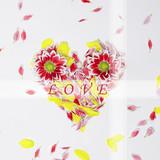 amore cuore fiori