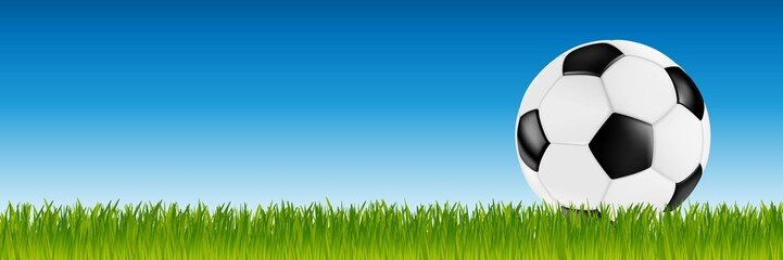 soccer retro vector leather ball black white on green grass in front of blue sky