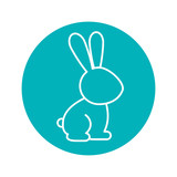 Circle shape with rabbit domestic animal vector illustration